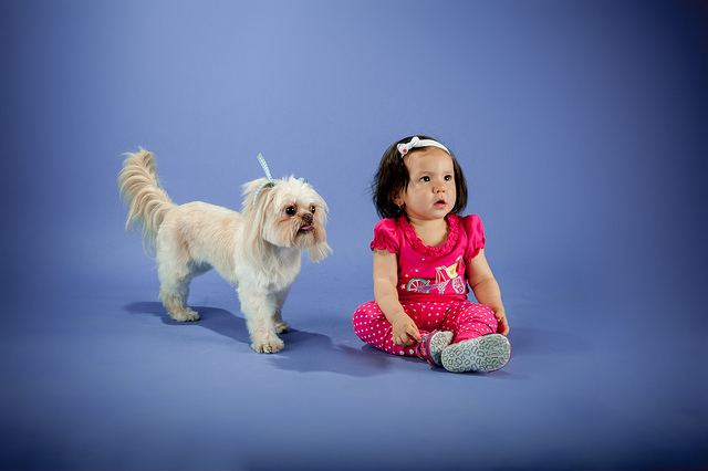Ages and Stages: Pet Care